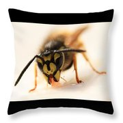 Jammy Wasp Throw Pillow