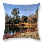 January Bass Pond 2012 Throw Pillow