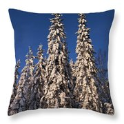 January Nr2 Throw Pillow