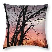 January Sunrise 3 Throw Pillow
