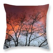 January Sunset Silhouette Throw Pillow