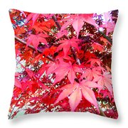 Japanese Maple Leaves 11 In The Fall Throw Pillow