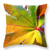 Japanese Maple Leaves 7 In The Fall Throw Pillow