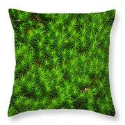 Japanese Moss Throw Pillow