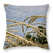 Japanese Silver Grass Throw Pillow