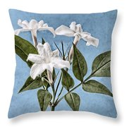 Jasminum Officinale Throw Pillow by John Edwards