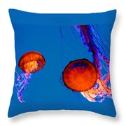 California Monterey Aquarium Jellyfish Exhibit  Throw Pillow