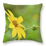 Jerusalem Gold Throw Pillow