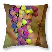 Jewel Tones Throw Pillow