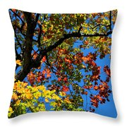 Jewels Of Autumn Throw Pillow