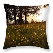 Jewels Of The Dawn Throw Pillow