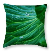 Jewels Of Water Throw Pillow