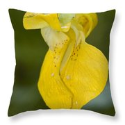 Jewelweed Flower 1 Throw Pillow