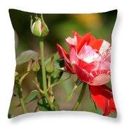Jh Pierneef Rose Throw Pillow