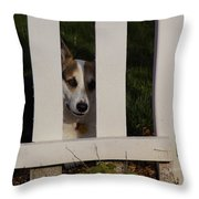 Johnny And The Picket Fence Throw Pillow