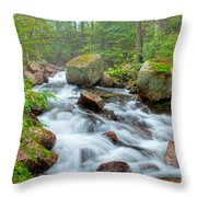 Jordan Stream Throw Pillow