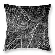 Journey Inward Monochrome Throw Pillow
