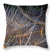 Journey Inward Throw Pillow