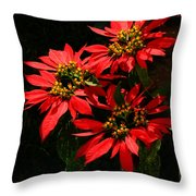 Joy And Prosperity IIi Throw Pillow