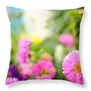 Joy Of Summer Time Throw Pillow