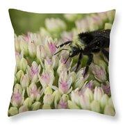 Joyous Bee Throw Pillow