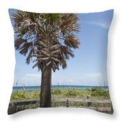 Juan Ponce De Leon Landing Site In Florida Throw Pillow