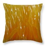 Juicy. Abstract Macro.  Throw Pillow