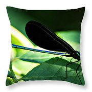 July Dragonfly II Throw Pillow