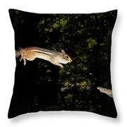 Jumping Chipmunk Throw Pillow