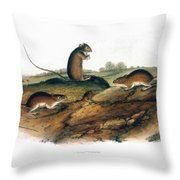 Jumping Mouse, 1846 Throw Pillow