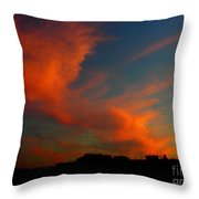 June 29 2010 Throw Pillow