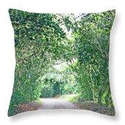 Jungle Drive Avery Island La Throw Pillow