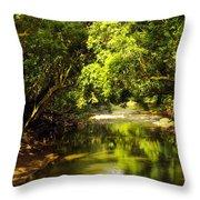 Jungle Stream Below The Secret Throw Pillow