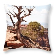 Juniper - Colorado National Monument Throw Pillow