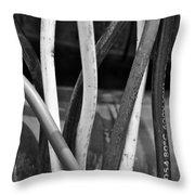 Junkyard Macro No. 22 Throw Pillow