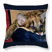 Just A Big Kitten Throw Pillow