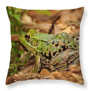 Just A Frog Throw Pillow