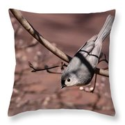 Just A Swinging Throw Pillow
