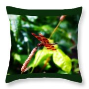 Just A Taste Of Nature Throw Pillow