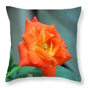 Just Bloomed Throw Pillow