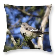 Just Cozy Throw Pillow