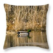 Just Ducky Living Happily Ever After Throw Pillow
