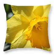 Just For The Frill Of It Throw Pillow