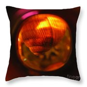Just Hanging In There. Square Format. Throw Pillow