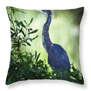 Just Out Of The Water Throw Pillow