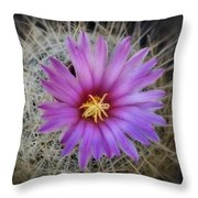 Just Pink  Throw Pillow