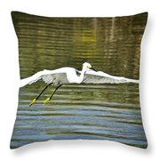 Just Soar  Throw Pillow