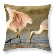 Juvenile Roseate Spoonbills Foraging Throw Pillow