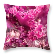 Kale Plant With Melting Snow Throw Pillow