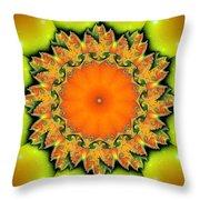 Kaleidoscope IIi Throw Pillow